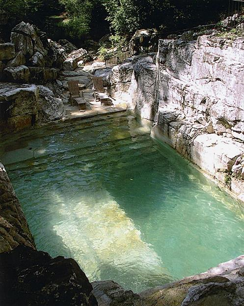 Pool Carved out of Limestone in Backyard