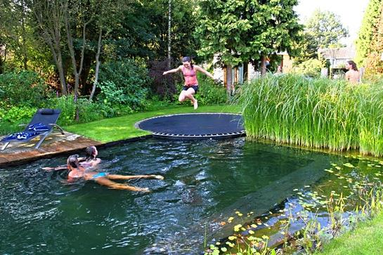 Pool With Trampoline Designed to Look Like a Pond