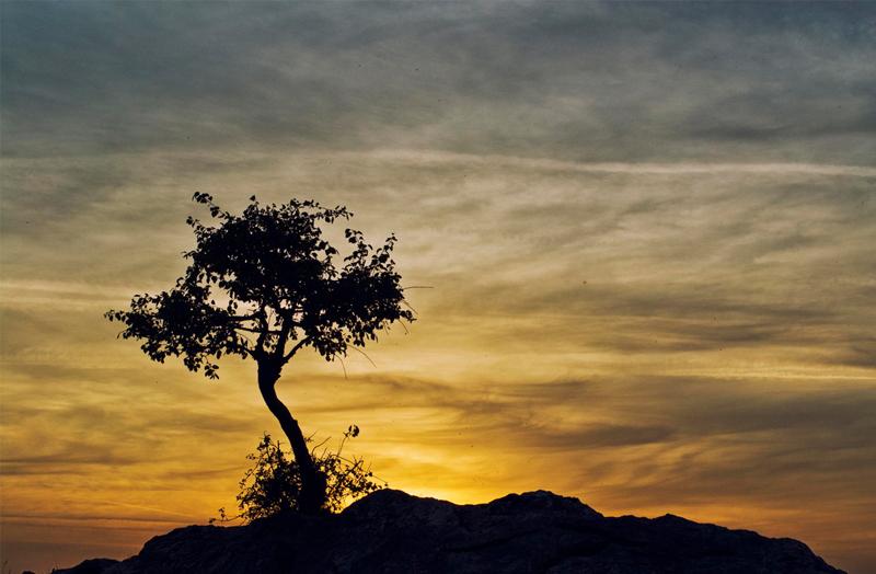 Irena Mila – Sunset