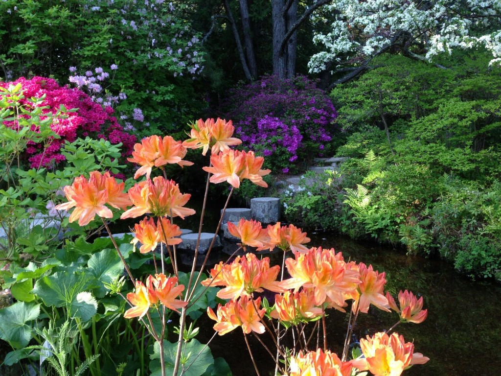 20-exquisite-gardens-from-around-the-world-that-will-take-your-breath-away-10