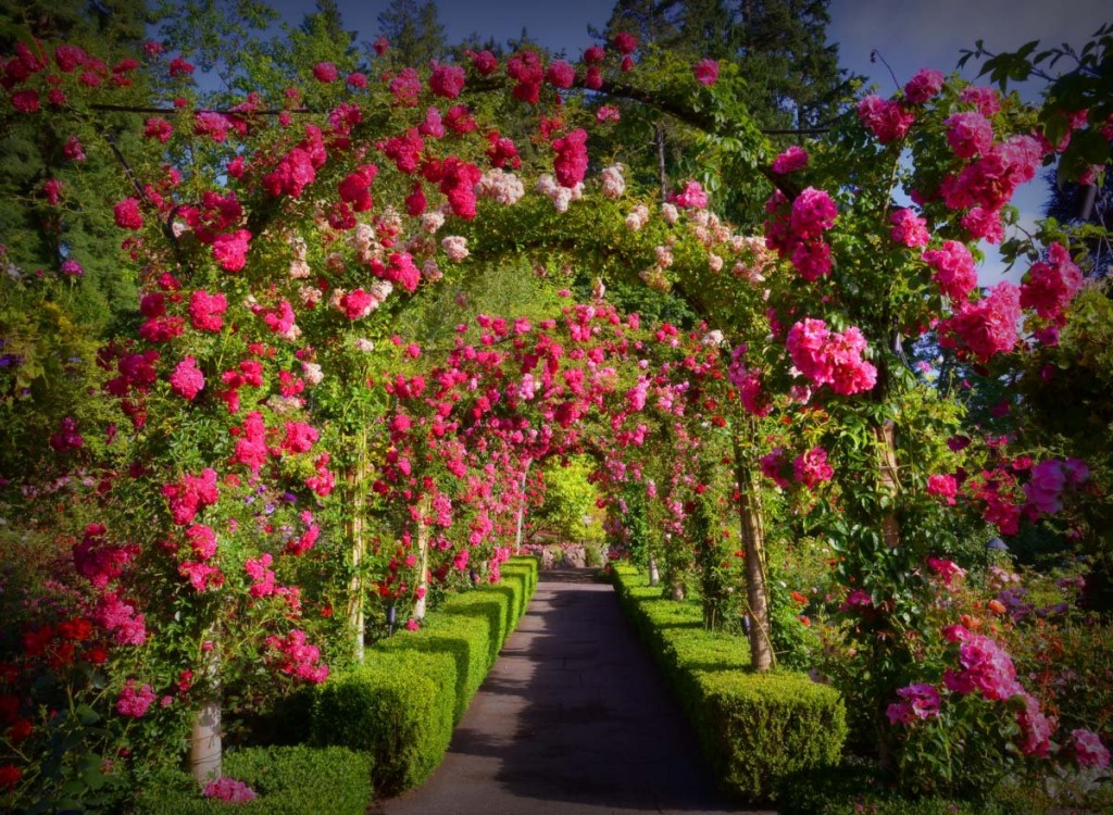20-exquisite-gardens-from-around-the-world-that-will-take-your-breath-away-15
