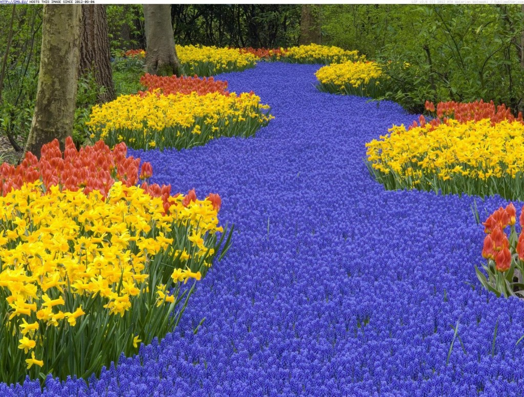 20-exquisite-gardens-from-around-the-world-that-will-take-your-breath-away-6