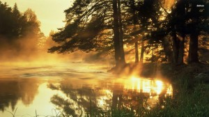 19100-orange-mist-over-the-forest-lake-1920x1080-nature-wallpaper