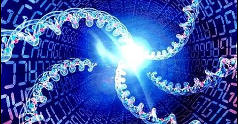 genetski kod_majkatiitatkoti