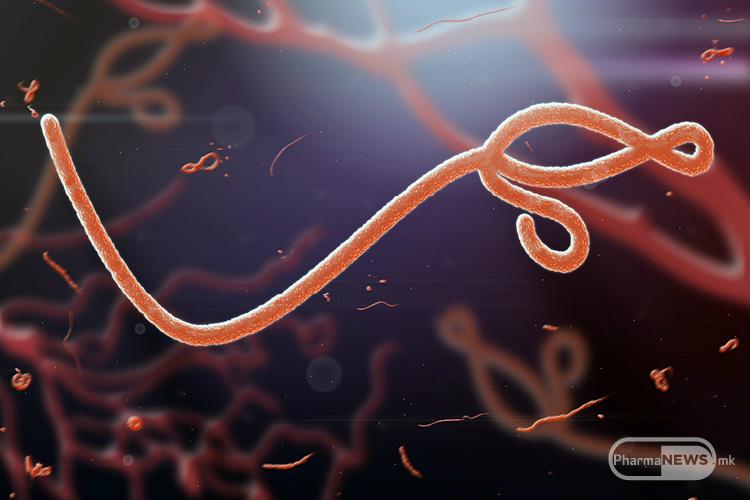 vojnata-so-ebolata-konechno-kje-dobie-nov-tek_image1