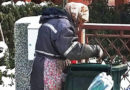 Сиромаштија дечко…ладно, ама мора од нешто да се живее
